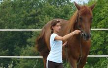 A cavallo con Bonsenso