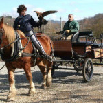 Equitazione_bonsenso_5