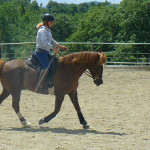 Equitazione_corsi_13