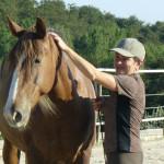 Equitazione_corsi_19