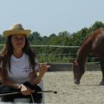 Equitazione_corsi_4