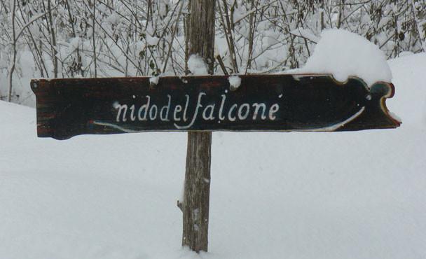NidoFalcone_5
