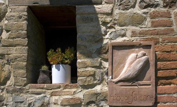 nido-del-falcone_falco