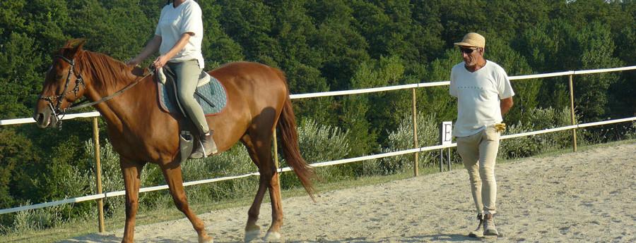 """""""Cavallo in cammino"""""""