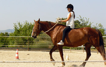 attivita-2020_equitazione